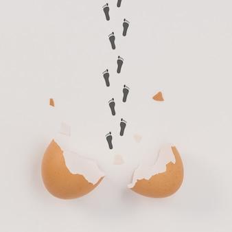 生まれたばかりの足跡を持つ壊れた卵殻。