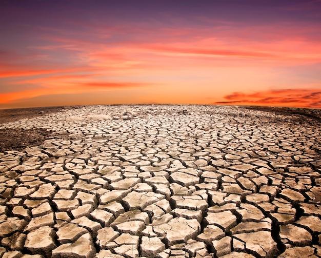 깨진 땅 가뭄