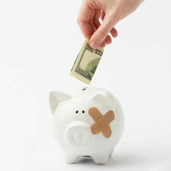 Broken piggy bank and bank-note Free Photo