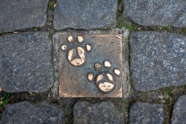 Bronze paws of an animal on a sidewalk in the city of bremen.