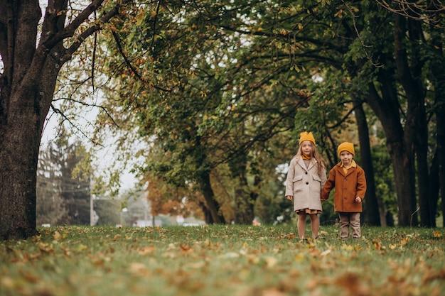 公園で一緒に楽しんでいる兄と妹