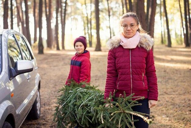 Брат и сестра в лесу крадут елку