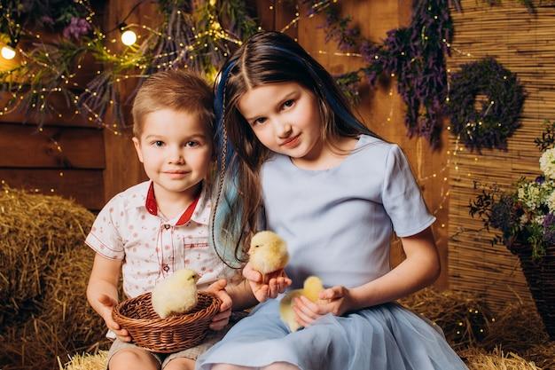 농장의 형제 자매는 웃고 닭을 봅니다.