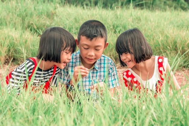草の牧草地で遊ぶ兄弟と姉妹