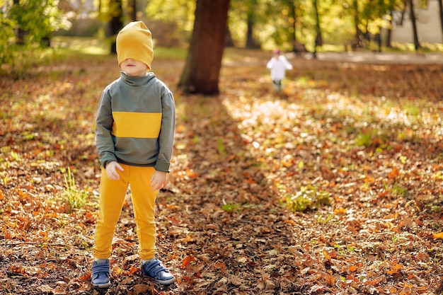 兄は、紅葉が落ちた秋の公園で、幼児の女の子とかくれんぼをしています。