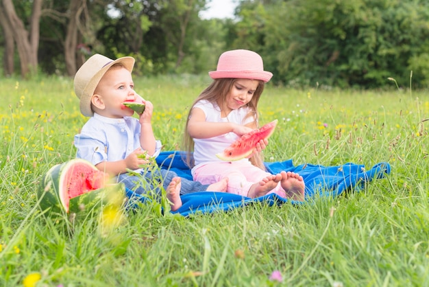 Brother and sister sitting on blue blanket over green grass eating watermelon
