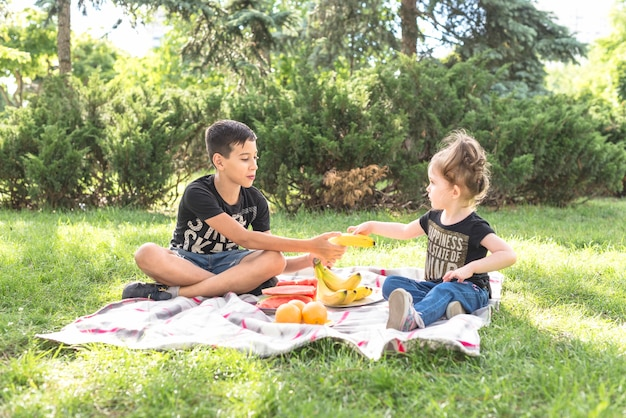 Brother and sister sitting in the park with many fruits