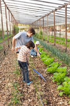 Brothers working with a rake in the greenhouse