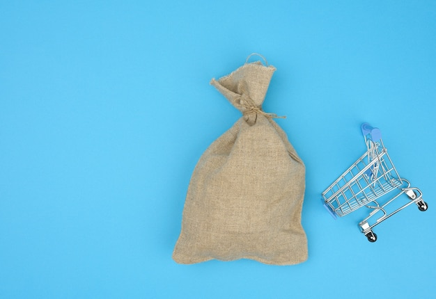 Brown bag in a miniature little shopping cart on a blue background. wealth, budget planning