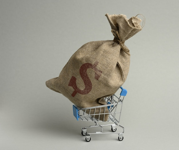 Brown bag in a miniature little shopping cart on a gray surface. wealth, budget planning, expenses and income concept