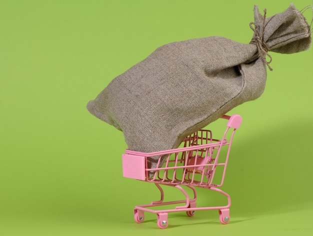 Brown bag in a miniature little shopping cart on a green background. wealth, budget planning, expenses and income concept