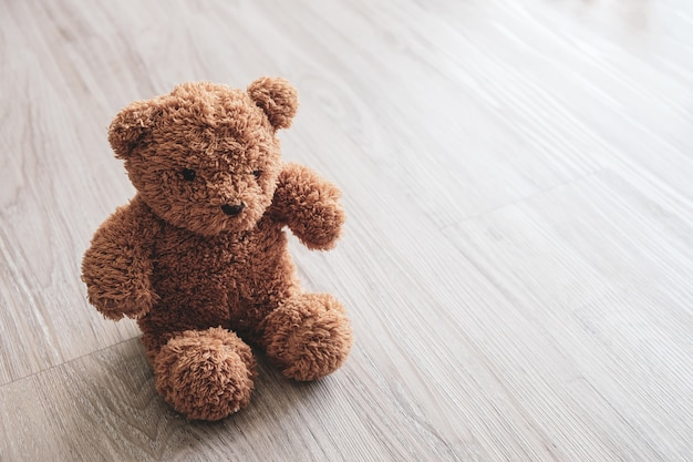 Brown bear sitting against a white wall