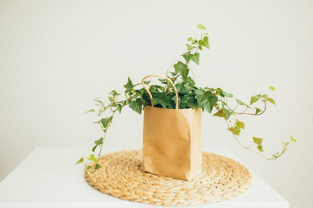 Brown and beige paper shopping bag with ivy plant in modern bright room,