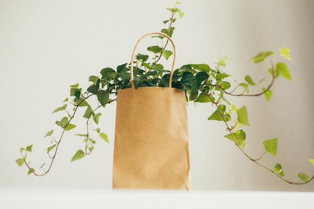 Brown and beige paper shopping bag with ivy plant in modern bright room