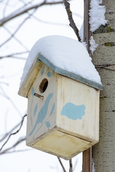 Brown birdhouse on the tree. handmade wooden nesting box covered in snow. winter landscape with trees covered of the snow.