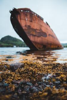 昼間のクローズアップ写真中に茶色のボート