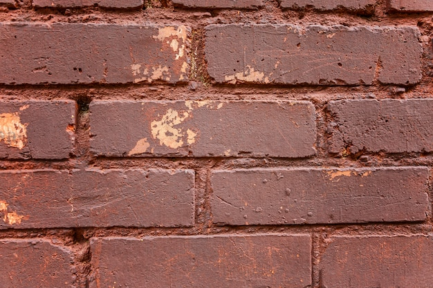 Brown brick wall. close-up. spaces and textures. space for text.