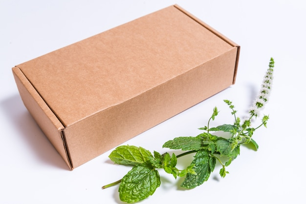 Brown cardboard box and branch of fresh peppermint