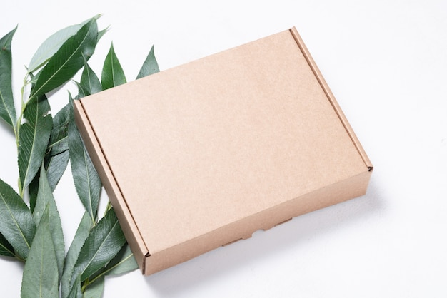 Brown cardboard box with tree brush