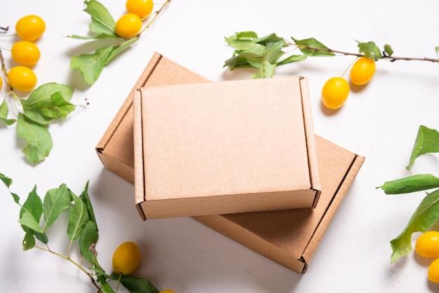 신선한 녹색 잎을 가진 갈색 마분지 판지 상자