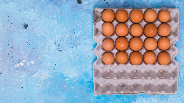 Brown chicken eggs in rack on table