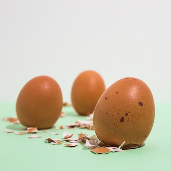 Brown chicken eggs with broken shell on light table