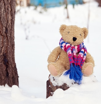 Brown children`s soft toy bear in a bright knitted scarf