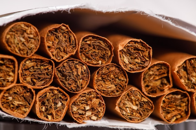 Brown cigarettes in a pack close-up. horizontal frame