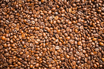 Brown coffee beans and seed