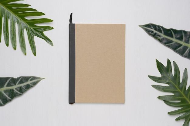 Коричневый цветной ноутбук на белом фоне с тропическими листьями монстры