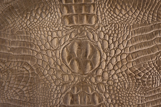 Brown crocodile leather pattern for background and texture
