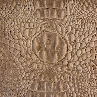 Brown crocodile leather pattern for  and texture