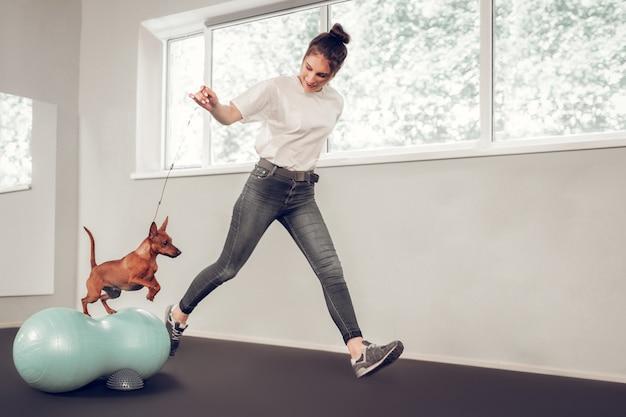 갈색 개 점프. 그녀의 사랑의 돌보는 주인이 그를 훈련하는 동안 귀여운 갈색 개 점프
