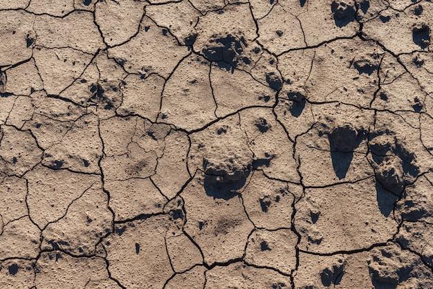 茶色の乾燥土壌背景トップビュー。乾燥した茶色の割れた地球のテクスチャ。