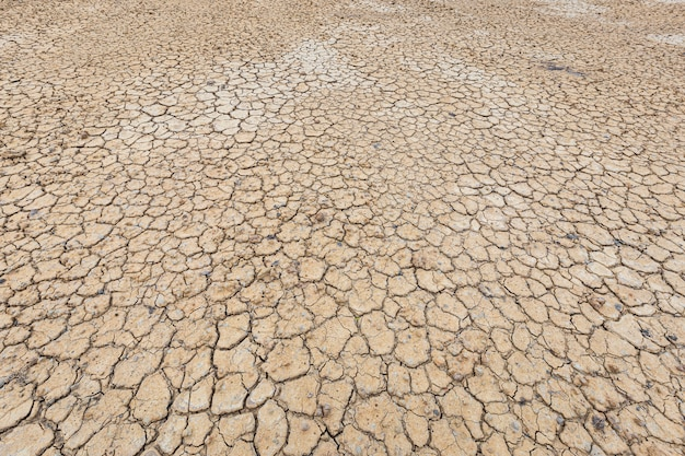 Brown dry soil or cracked ground texture background.