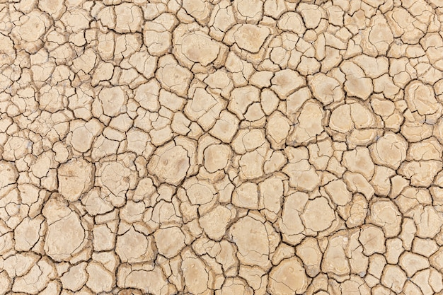 Brown dry soil or cracked ground texture.