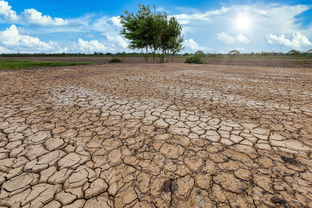 Brown dry soil or cracked ground