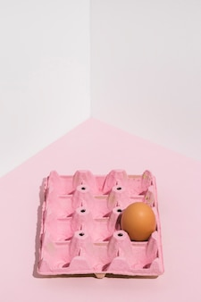 Brown egg in pink rack on light table