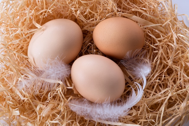 Brown eggs in the hay in a nest with feathers. top view.