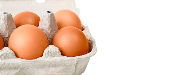 골판지 상자에 갈색 계란. 흰색 배경에 고립. 레이아웃, 레이아웃, 로고 및 텍스트 공간.