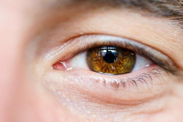 남자의 갈색 눈