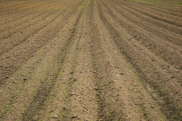 A brown field with ploughed rows of dirt