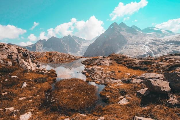 昼間は雪に覆われた山の近くの茶色の芝生のフィールド