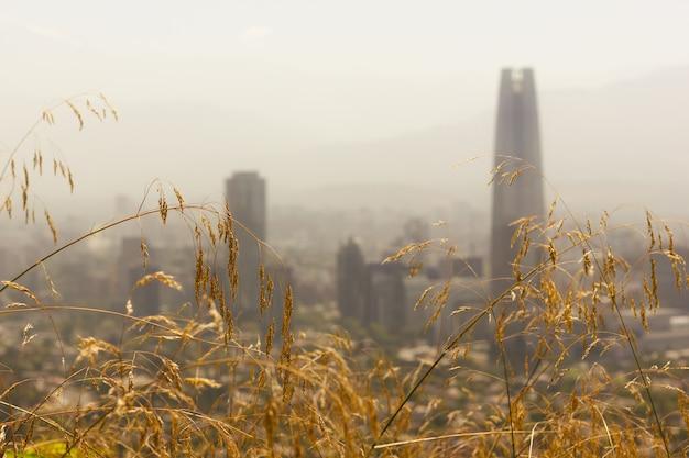 チリの晴れた夏の日の首都の背景にサンティアゴの街並みと茶色の草
