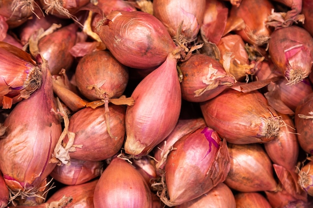 Brown harvested onions