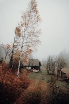 木の近くの茶色の家