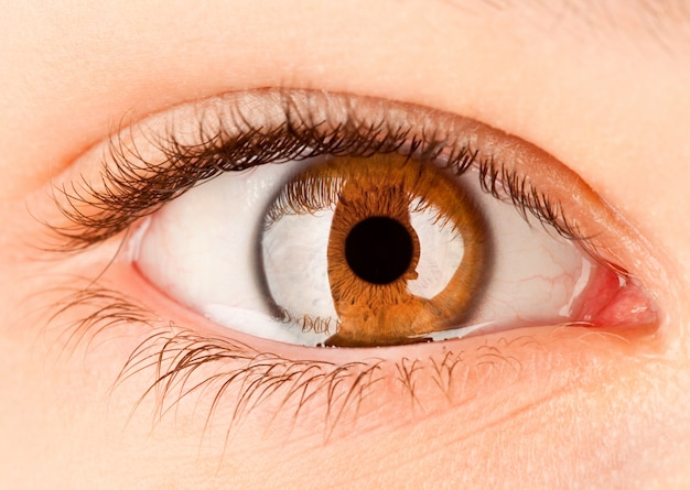 Brown human female eye close up