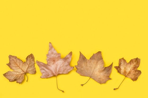 Коричневые листья на желтом фоне и вид сверху