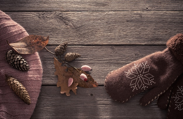 Brown mitten and cones  on wooden background