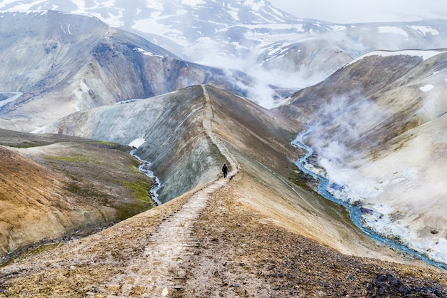 茶色の山々
